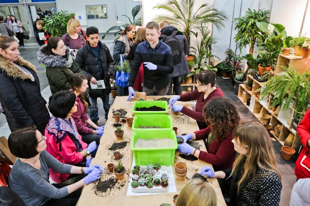 Gardenia – wszystko dla ogrodu… i dla ogrodnika! - targi 1